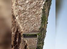 تشييك مزارع و استصلاح أراضي ويناسب و بناء بيوت وشاليهات