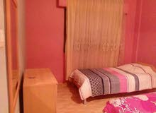 Furnished Apartment in Aqaba 7th Area