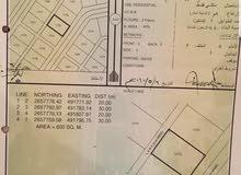 ارضين صك في ديل ال عبدالسلام (صحم)