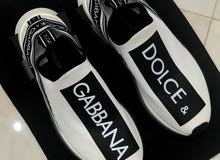 DOLCE and GABBANA shoe