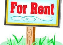 للايجار شقة 5 غرف بالصفا دور ارضي