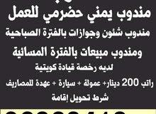 مطلوب مندوب يمني