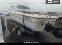 قارب امريكي 6 باسطوني