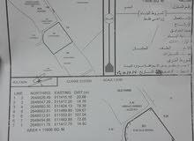 للبيع وللإستثمار أرض كبيرة جدا الخابور / خور الهند أرض كبيره مساحة 11606 فيها موافقه سكني