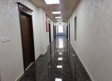 مكاتب فخمة مساحات مختلفة للايجار شارع الحرية إشارات أبو زغلة
