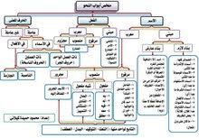 مدرس لغة عربية تأسيس ومتوسط وثانوي وجامعي