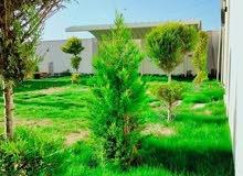 استراحة مساحة الأرض 600م في البوعيش..كود185