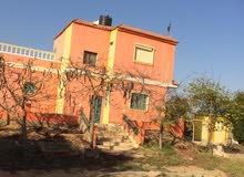 مزرعة للبيع بطريق اسكندريه الصحراوي