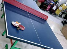 Professional Tennis Table Outdoor