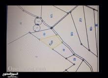 للبيع ارض تصلح مزرعة في شمال الزرقاء فوق غريسا منطقة حمنانة 4 دونم مفروزة