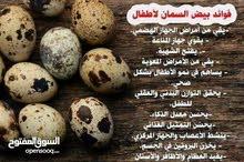 بيض سمان طازج