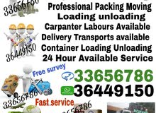professional services house shifting very low price