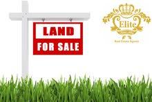 قطعة ارض مميزه للبيع في الاردن - عمان - دابوق مساحة 3715متر