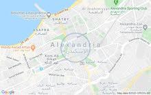 محل(41م)للايجارعلي شارع عبدالناصرمباشربسيدي بشربحري(164)