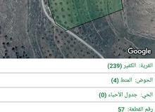 14 دونم مزرعات زيتون جميع الخدمات ب 45 الف