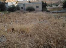 ارض للبيع في منطقة رافل - يرقا بالقرب من مسجد رافل (الصابرين)
