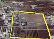 ارض بمساحة 4 دوانمات و 632 م للبيع في بيت راس اربد