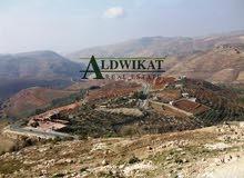 ارض 1032م للبيع في الاردن - عمان - ناعور