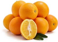 برتقال مصري وعمبرود افريقي باسعار جمله الجمله