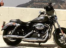 helmet harely+jacket+gloves+vest+camera+Harely Davidson limited Custom 1200 CC