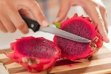 اشتال فاكهة التنين Dragon fruit