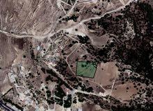 قطعة ارض مميزه من اراضي السلط مذبح الجاموسه