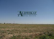 ارض للبيع في منطقة الطنيب على طريق المطار مباشرة بمساحة 10 دونم