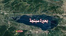 أرض رائعة في صبنجة - تركيا إطلالة 180°