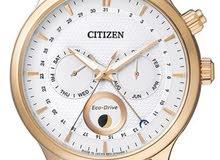 Citizen Eco-Drive Moon Phase Japan Sapphire Gent's Leather WatchAP1052-00A