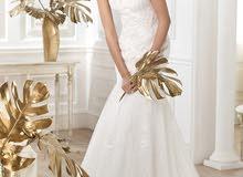 فستان عرس pronovias ملبوس