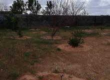 ارض في الباعيش خلف حوايز الورد وتخشلها من شارع الغاز 0922838856