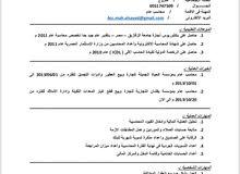 محاسب مصرى خبره 5 سنوات