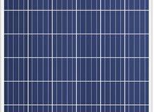 خلية شمسية PV Trina Solar 330 W