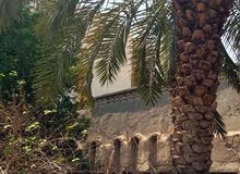 بيت للبيع منطقة حي الرافدين قرب الشارع التجاري طابوملك صرف بناءطابوك سكف كونكريت