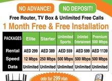 etisalat home internet package 299