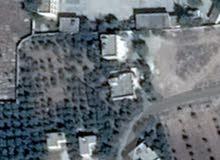 بيت طابقين على دونمين  مادبا لب بجانب  مدرسه  لب الثانويه  للبنات