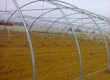 بيوت زراعيه محميه بلاستيكيه للبيع