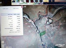 ارض زراعي مرويه من سيل الواله للبيع بجانب سلطة مياه الواله 4 دونم