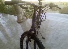 دراجة ايطاليا للبيع
