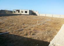 قطعة ارض بالقرب من جزيرة بسيس ...