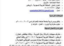 مندوب مبيعات خبره 13 سنه