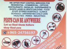 شركة مكافحة الحشرات والآفات والقوارض وجميع انواع الحشرات بأرخص الأسعار وجودة