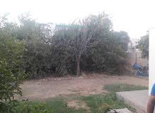 بيت في الجادرية 636 متر