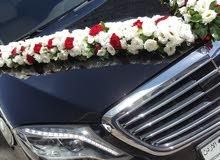 سيارات الاعراس الاجمل في عمان