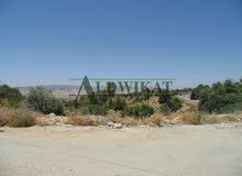 اراضي للبيع في الاردن - عمان - الجيزة (ربوة المطار)  , بمساحة 500م