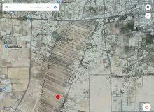 قطعة ارض 1000 متر في الزعفران طريق الغربيات