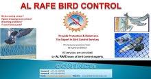Bird Spike & Bird Netting Supplier in all over U.A.E