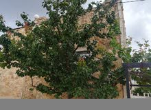 Ground Floor  apartment for sale with 3 rooms - Irbid city Arhaba