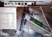 أرض زراعي3500م للبيع-مادبا-الدخاخين الجنوبي