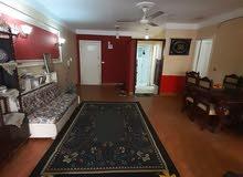 شقة مفروشة للايجار بميامي مدة قصيرة او فترة الشتاء عائلة او طالبات